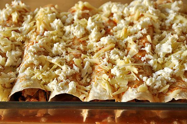 chicken-enchiladas-photo1